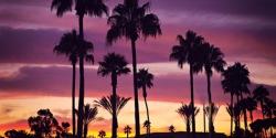 Concierge Doctors Thrive in California